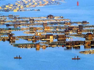 【暑期】[象山三日] 松兰山海滨浴场-渔港古城-溪口老街-西江皮筏漂流